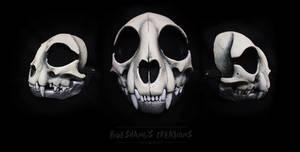 Custom Cat Skull Mask - Bone n Silver by Bueshang