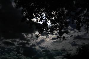 night sky by petr28