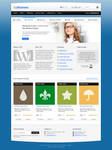 TopBusiness: front and portfolio pages (Free PSD)