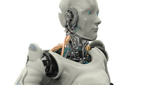 Humanoid Robot VIKI