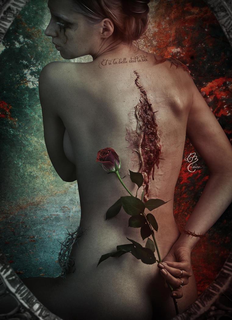 Melancholic Poet  Et si la belle etait la bete by Le-Meridian