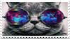 Cat Stamp by sqacedoge