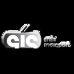 logo GIS_bar type bw