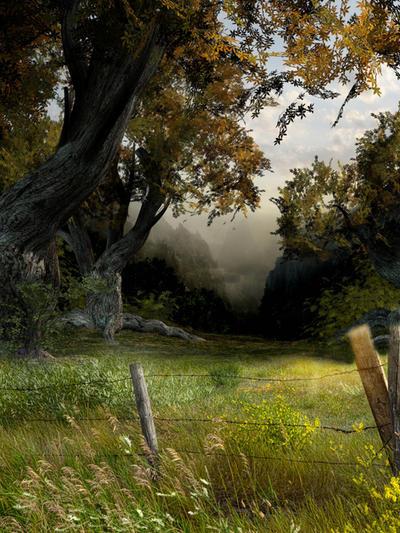 Meadow by DesignbyKatt