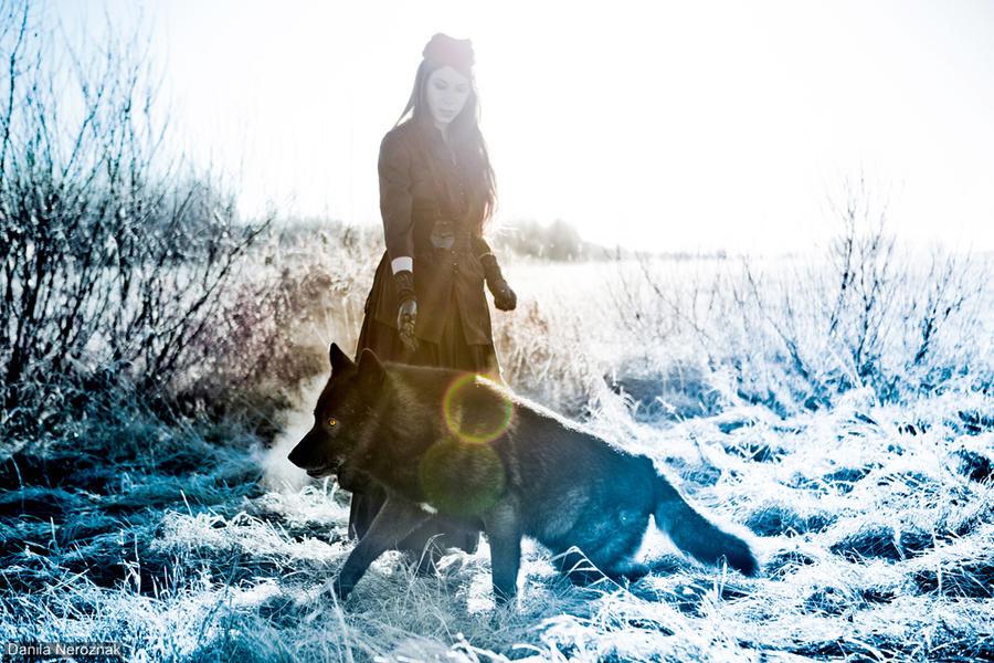 wolf by Danila-Neroznak