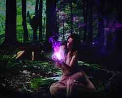 Sorcerer Of The Black Forest