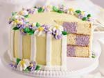 Vanilla + Taro checkered Cake