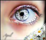 April Eye