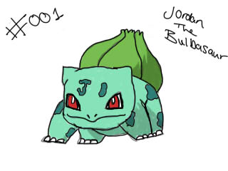 The Pokemon Project _001_by_wildinthestreets-d5w9air