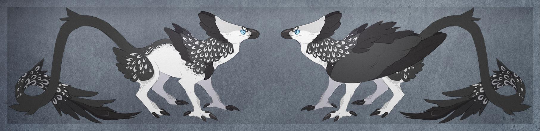 Harpy Griff by Sheylu