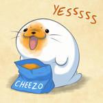 Harp Seal Friend:  Cheesy