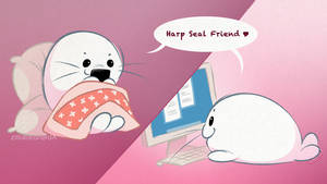 Harp Seal Friends: Chatting