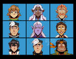 The Voltron Bunch 2:2