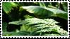 green stamp one [f2u] by starstrock