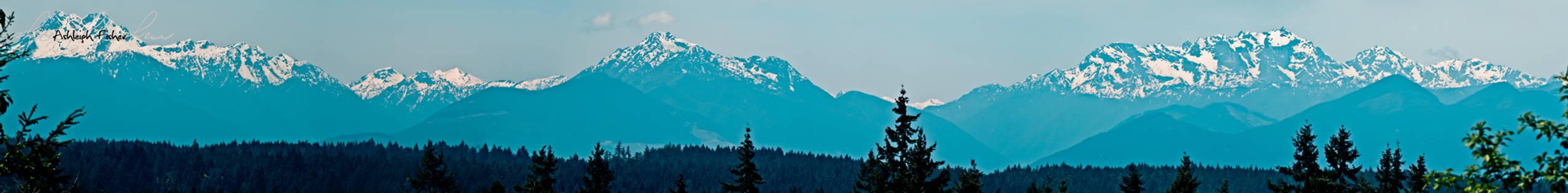 Olympic Mountains Panorama