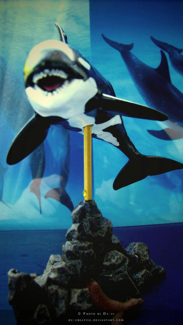 Orca Creative Group 81
