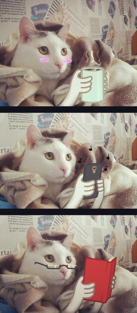 Lazy Cat by MRS-KEHA-D-LAMO-LAM