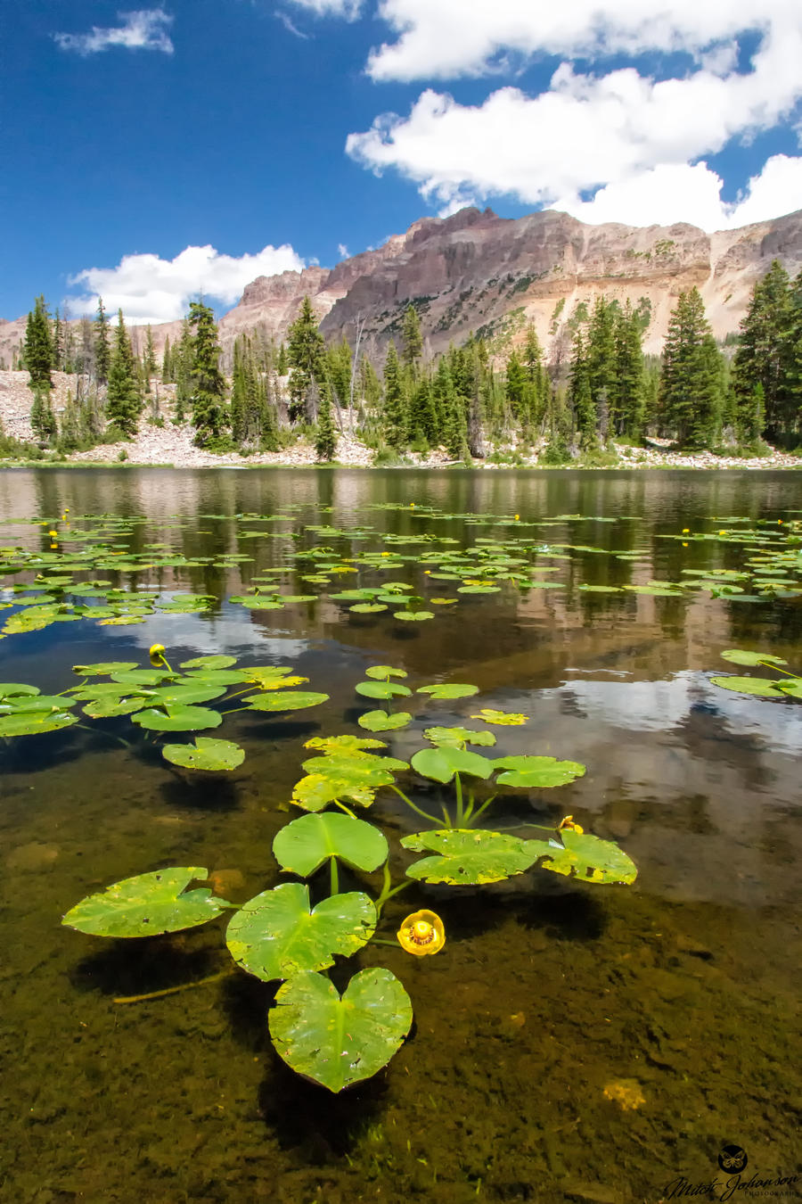 Lily's and Hayden Peak by mjohanson