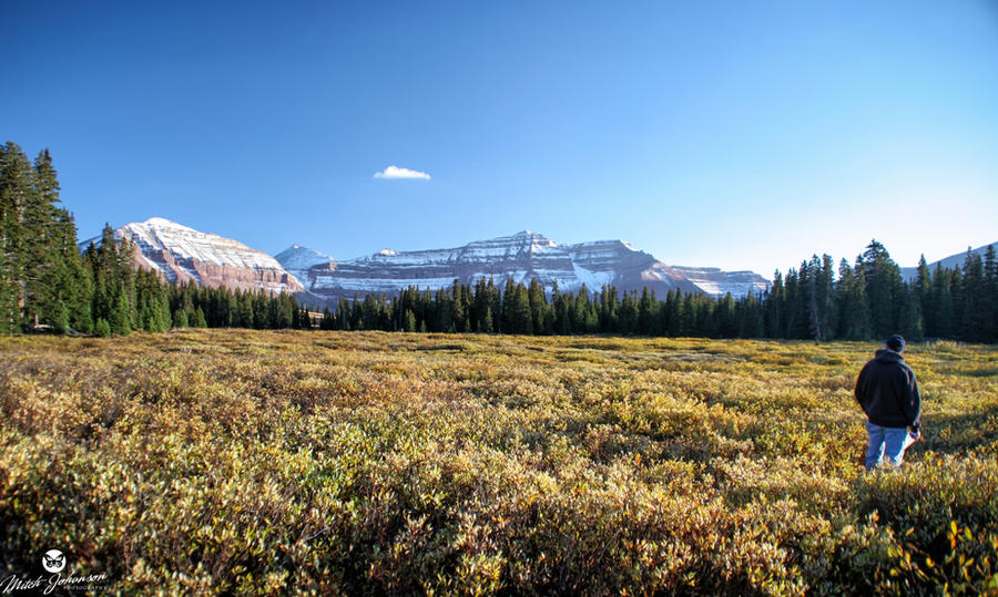 Wide Open View of King's Peak by mjohanson