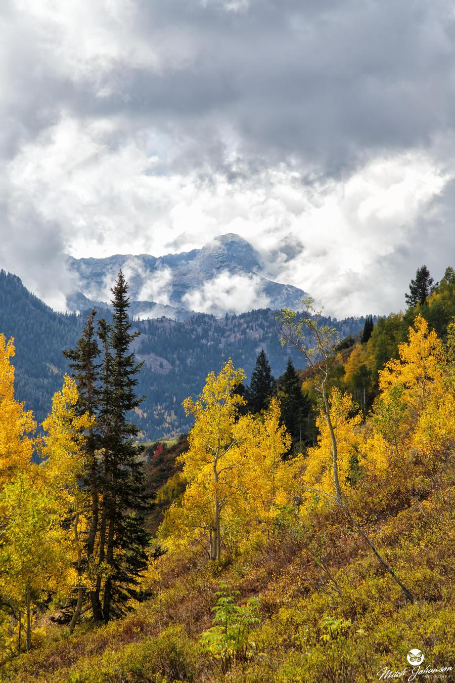 Stormy Autumn by mjohanson