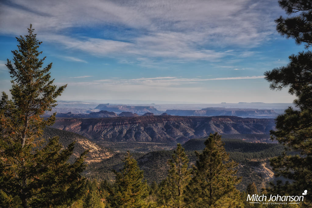 Past the Pines to Red Rock by mjohanson