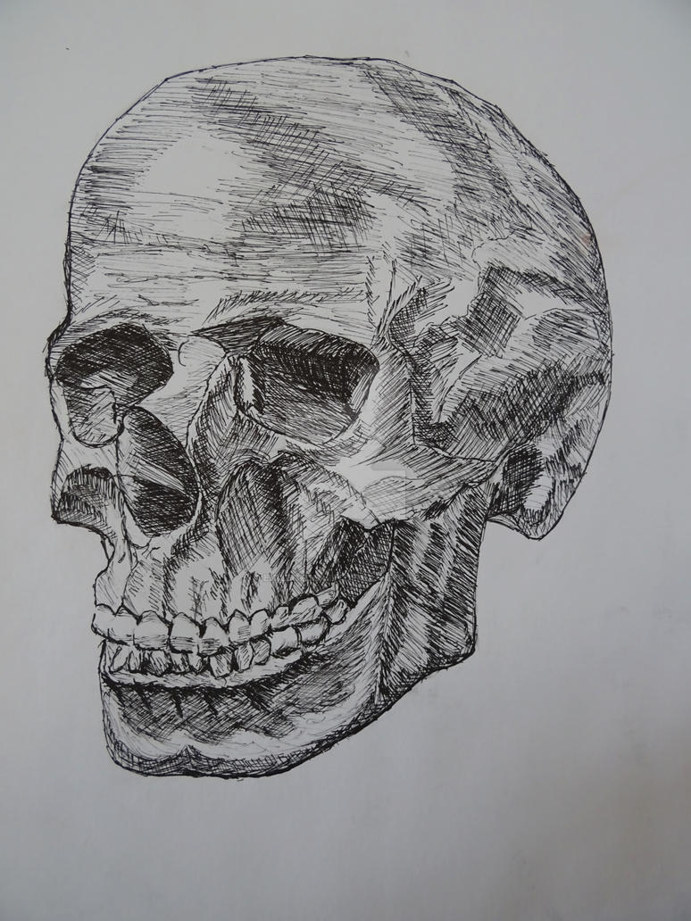 Skull And Pen by ExileOfDeath