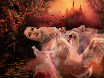 The Swan Thieves by ChristabelleLAmort