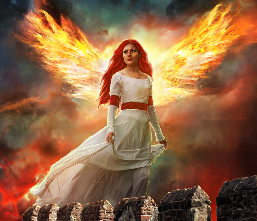 Wings by ChristabelleLAmort