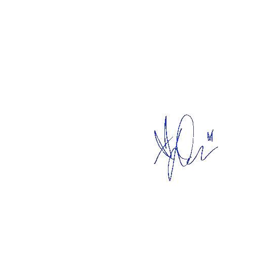 A4 The Signature Shop Signiertes Autogramm Demi Lovato Passepartout