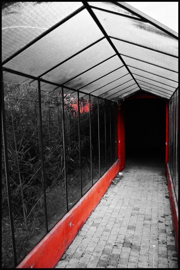 red coridor