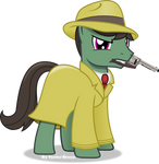 The mysterious stallion