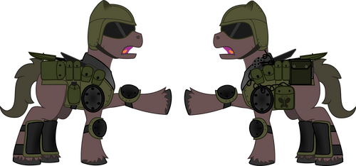 Soldier pony