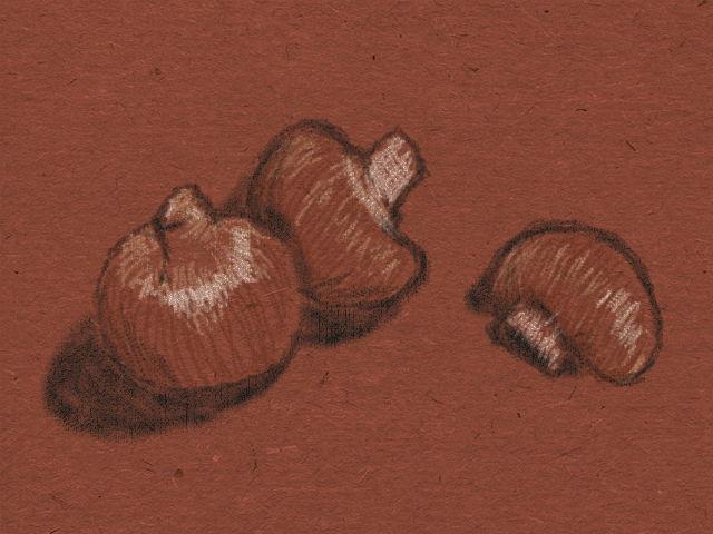 mushroom by LiaVilore