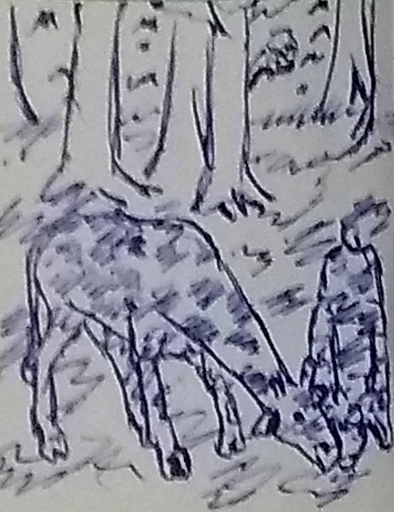 Momento de carinho entre girafa mae e girafinha