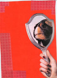 mirror mirror do not fail by karakedi