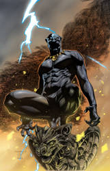 Black Panther by roncolors