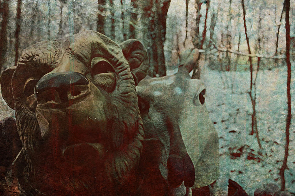 come to the woods my friend by BerryAntoinette