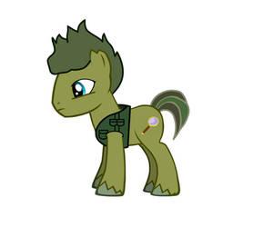 my pony oc: Fact