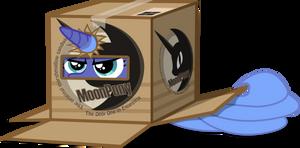 I'm Living in a Box
