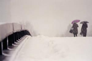 snow tomorrow 4 by pstoev