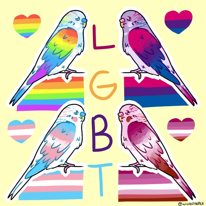 lgtbudgie pride stickers