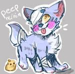 peep redesign