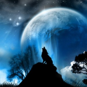 WolfBlood552's Profile Picture