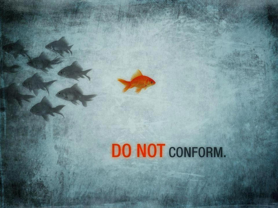 DO NOT conform by NicoleNi