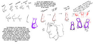 Nose Variety Notes