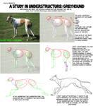 Understructure Study: Greyhound by ThirdPotato