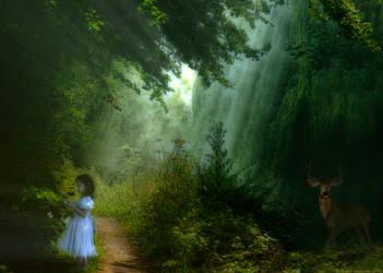 Woodland Wonders by JennBowers