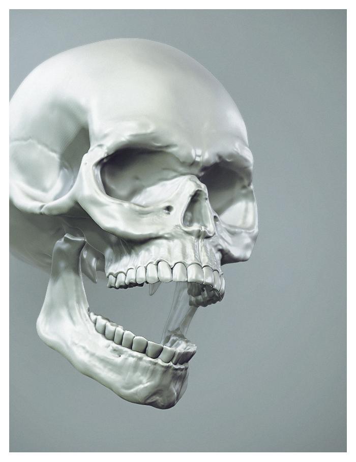 human skull by lucirgo on deviantart