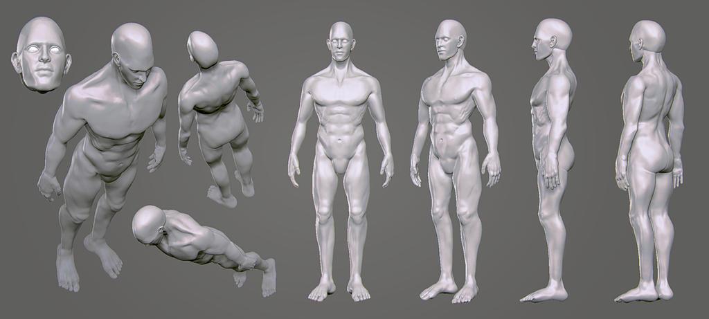 Male human body by lucirgo on DeviantArt