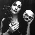 Fleurs pour les Morts